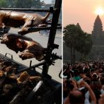 Dog meat banned in Cambodian tourist town beloved by Brits after industry that butchers 3m pooches a year sprung up