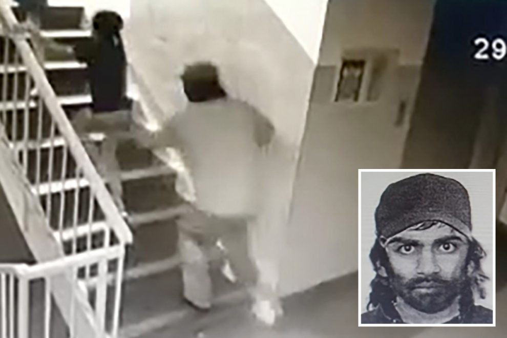 Chilling moment 'paedophile' grabs girl in apartment block and tries to drag her away before she fights him off