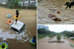 South Korea floods leave 30 dead as rain sees residents stranded on roofs