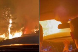 Horrifying moment pals drive through towering flames to escape wildfires ravaging Turkey leaving six dead